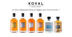 koval_D